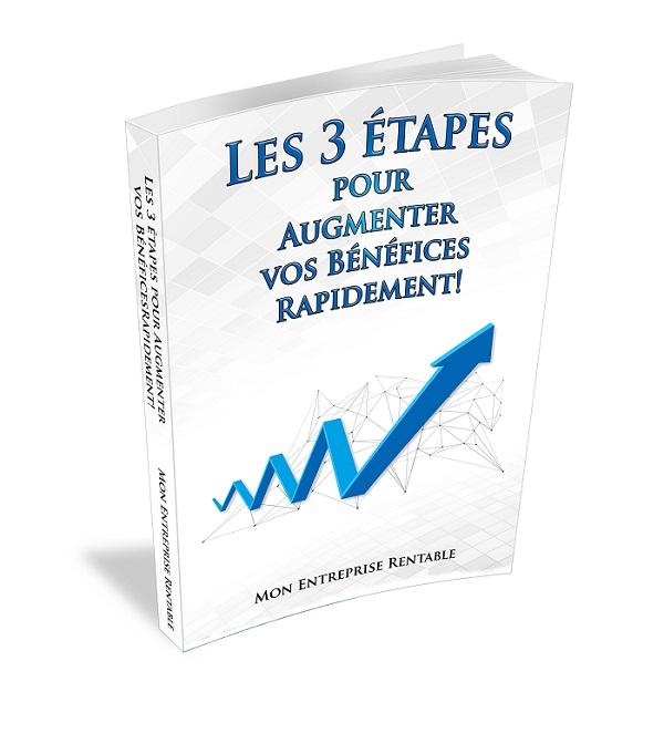 Les 3 étapes pour faire décoller votre Entreprise